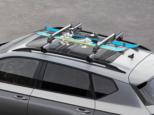 Ski rack for 6 pairs or 4 snowboards